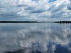 The Magnificent Lake - National Park Belovezhskaya Pushcha - by Anika Mikkelson - Miss Maps - www.MissMaps.com