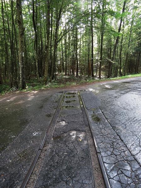 Train Tracks to Nowhere - National Park Belovezhskaya Pushcha - by Anika Mikkelson - Miss Maps - www.MissMaps.com