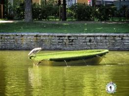 A Bird on a Boat - Tallinn Estonia - by Anika Mikkelson - Miss Maps - www.MissMaps.com