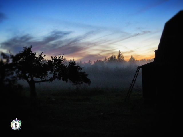 A foggy twighlight in the field behind the house - South Estonia - by Anika Mikkelson - Miss Maps - www.MissMaps.com