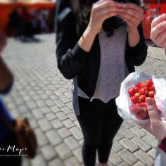 Berry Picking - This Counts Doesn't It - Helsinki Finland - by Anika Mikkelson - Miss Maps - www.MissMaps.com