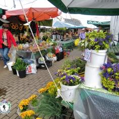 Flower Market - Riga Latvia - by Anika Mikkelson - Miss Maps - www.MissMaps.com
