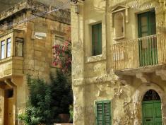 Flowers and Greenery - Malta - by Anika Mikkelson - Miss Maps - www.MissMaps.com