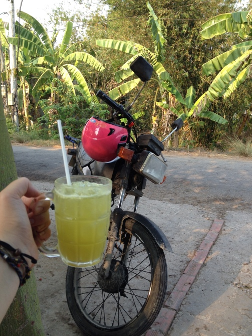Freshly squeezed sugar cane juice in southern Vietnam - Photo provided by Lottie Reeves - MissMaps.com Featured Female Traveler