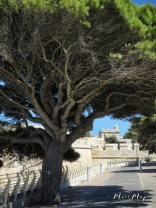 Gates of Mdina - Malta - by Anika Mikkelson - Miss Maps - www.MissMaps.com