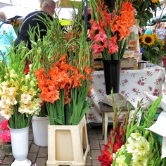 More beautiful flowers at the market - Riga Latvia - by Anika Mikkelson - Miss Maps - www.MissMaps.com