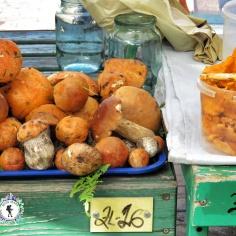 Mushroom Market - Riga Latvia - by Anika Mikkelson - Miss Maps - www.MissMaps.com