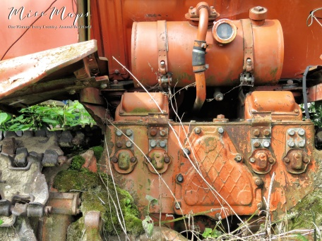This tractor is so lovely in its antique abandoned life - Northern Estonia - by Anika Mikkelson - Miss Maps - www.MissMaps.com