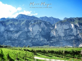 Vines and Mountains in Northern Italy - The Road to Liechtenstein - by Anika Mikkelson - Miss Maps - www.MissMaps.com