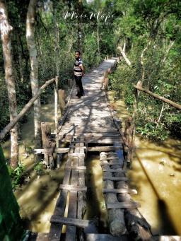 Walking through the Mangroves - Sundarbans near Mongla Bangladesh - by Anika Mikkelson - Miss Maps - www.MissMaps.com
