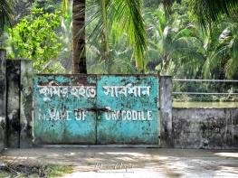 Beware of Crocodiles - Sundarbans of Bangladesh - by Anika Mikkelson - Miss Maps - www.MissMaps.com