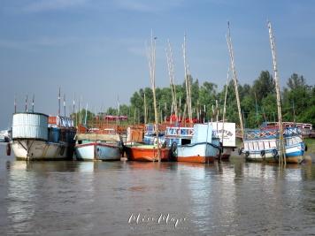 Boats at Rest - Mongla Bangladesh - by Anika Mikkelson - Miss Maps - www.MissMaps.com