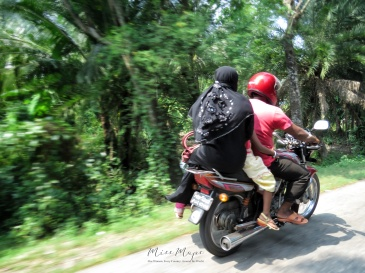 Three's Company - View From the Motorbike - En Route to Mongla Bangladesh - by Anika Mikkelson - Miss Maps - www.MissMaps.com