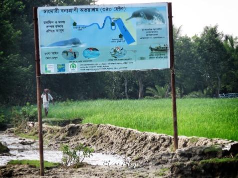 Wildlife and Warnings - Sundarbans Near Mongla Bangladesh - by Anika Mikkelson - Miss Maps - www.MissMaps.com