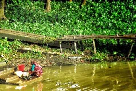 Woman Washing Clothes in the River - View from the Rocket Steamer - Dhaka to Sundarbans Bangladesh - by Anika Mikkelson - Miss Maps - www.MissMaps.com