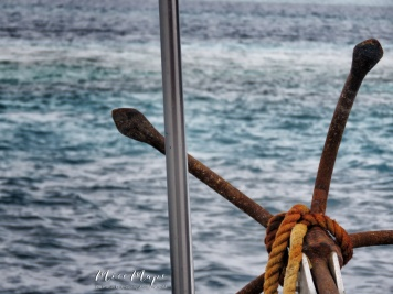 Anchors Away - Indian Ocean Maldives - by Anika Mikkelson - Miss Maps - www.MissMaps.com