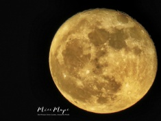 Full Moon from Sylhet Bangladesh - by Anika Mikkelson - Miss Maps - www.MissMaps.com
