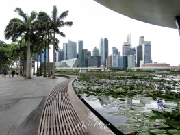 Singapore's Downtown Skyline - by Anika Mikkelson - Miss Maps - www.MissMaps.com
