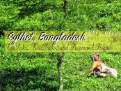 sylhet-bangladesh-by-anika-mikkelson-miss-maps-www-missmaps-com