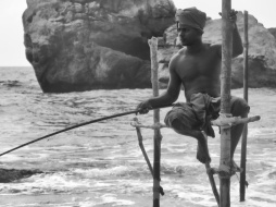 A Stilt Fisherman - Kegalle Sri Lanka - by Anika Mikkelson - Miss Maps - www.MissMaps.com