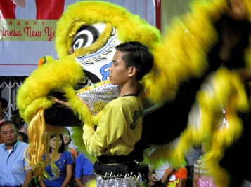 Dancer Presenting his Yellow Lion at Lion Dance Competition - Chinese New Year - Chinatown - Yangon Myanmar - by Anika Mikkelson - Miss Maps - www.MissMaps.com