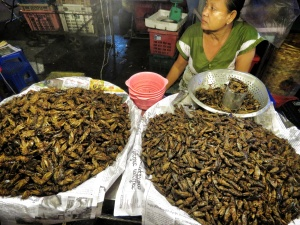 Insects as Late Night Snacks - 19th Street - ChinaTown - Yangon Myanmar - by Anika Mikkelson - Miss Maps - www.MissMaps.com copy