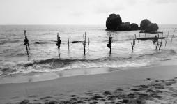 Silhouettes of Stilt Fishermen - Kegalle Sri Lanka - by Anika Mikkelson - Miss Maps - www.MissMaps.com