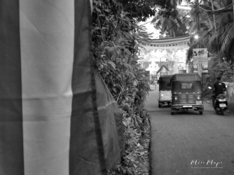 TukTuks Leading to the Buddhist Temple - Galle Sri Lanka - by Anika Mikkelson - Miss Maps - www.MissMaps.com