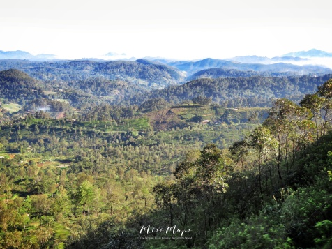 View From the Train - Train from Ella to Kandy Sri Lanka - by Anika Mikkelson - Miss Maps - www.MissMaps.com