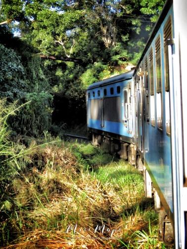 Views from the Train - Ella to Kandy Sri Lanka - by Anika Mikkelson - Miss Maps - www.MissMaps.com
