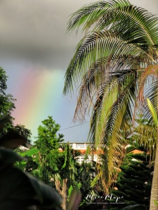 Day 4 of Daily Rainbows - Mauritius - by Anika Mikkelson - Miss Maps - www.MissMaps.com
