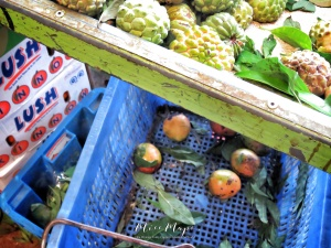 Market Basket - Mauritius - by Anika Mikkelson - Miss Maps - www.MissMaps.com