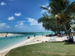 Paradise - Ile aux Cerfs - Mauritius - by Anika Mikkelson - Miss Maps - www.MissMaps.com