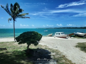 Seaside Mauritius - Ile aux Cerfs - Mauritius - by Anika Mikkelson - Miss Maps - www.MissMaps.com