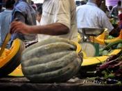 Supersized Squash at the Market - Mauritius - by Anika Mikkelson - Miss Maps - www.MissMaps.com