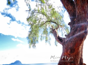 Trees and Clouds by the Sea - Mauritius - by Anika Mikkelson - Miss Maps - www.MissMaps.com
