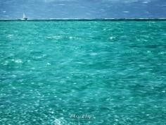 Waves and Splashes - Ice Aux Cerfs - Mauritius - by Anika Mikkelson - Miss Maps - www.MissMaps.com