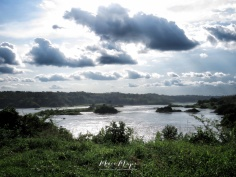 Calm Pool in the Nile River - Jinja Uganda Scenery - by Anika Mikkelson - Miss Maps - www.MissMaps.com