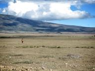 Masai Man - Serengeti National Park - Tanzania - by Anika Mikkelson - Miss Maps - www.MissMaps.com