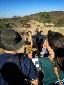 Safari at the Cheetah Park - Namibia - by Anika Mikkelson - Miss Maps - www.MissMaps.com