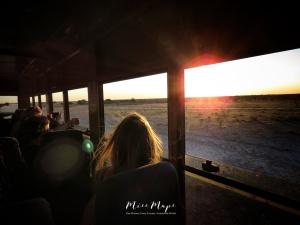 Truck Top Safari - by Anika Mikkelson - Miss Maps - www.MissMaps.com