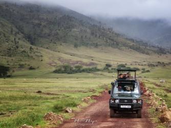 4 x 4 Safari - Ngorongoro Crater - Tanzania - by Anika Mikkelson - Miss Maps - www.MissMaps.com4 x 4 Safari - Ngorongoro Crater - Tanzania - by Anika Mikkelson - Miss Maps - www.MissMaps.com
