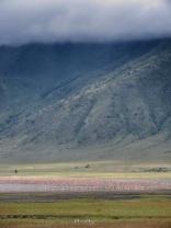 Flamingos - Ngorongoro Crater - Tanzania - by Anika Mikkelson - Miss Maps - www.MissMaps.com