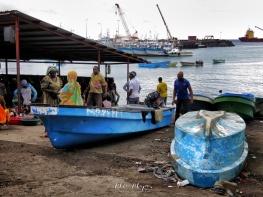 Fresh Fish Market - Moroni - Comoros - by Anika Mikkelson - Miss Maps - www.MissMaps.com