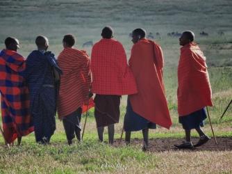 Maasai Men and Herds - Tanzania - by Anika Mikkelson - Miss Maps - www.MissMaps.com