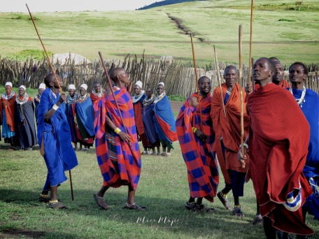 Dancing Maasai Tribe - Tanzania - by Anika Mikkelson - Miss Maps - www.MissMaps.com