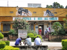 Honey Propolis and Bees Wax - Kisoro Uganda - by Anika Mikkelson - Miss Maps - www.MissMaps.com