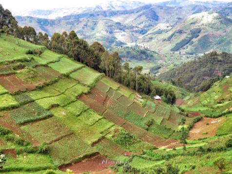 Ugandan Hills - Rural Uganda - by Anika Mikkelson - Miss Maps - www.MissMaps.com